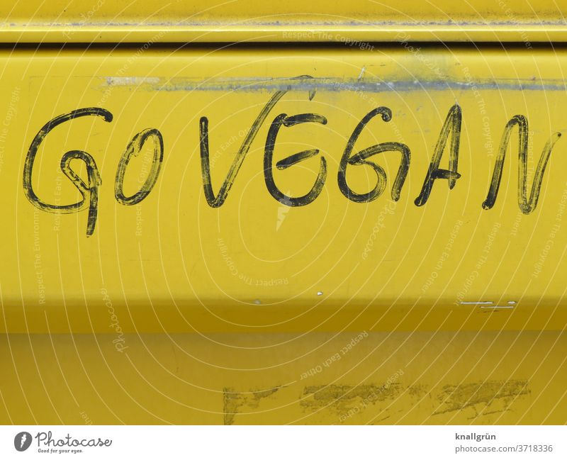 GO VEGAN Vegan diet Food Animal protection Nutrition Healthy Eating Vegetarian diet Organic produce Lifestyle Fresh green Delicious natural Vegetable