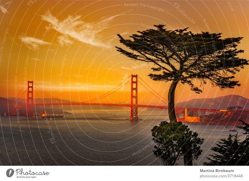 The famous Golden Gate Bridge in San Francisco , seen from Lands End gate bridge pacific california golden san francisco cavallo lands end structure suspension