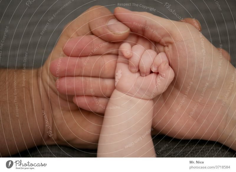 Small family hands by hand Father Mother Baby Parents Child Love Family & Relations Newborn luck dad mama holds infant Affection Life To hold on Touch Fingers