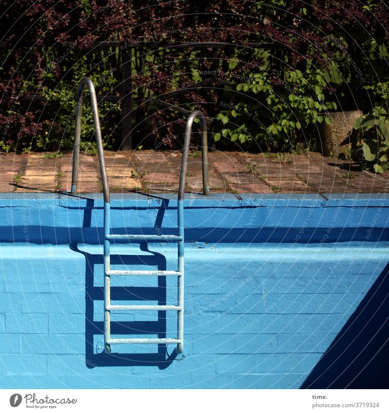 dry dock Blue swimming pools Metal High-grade steel Pool border sunny Shadow Sunlight Wall (barrier) Wall (building) Ladder initial assistance sprout