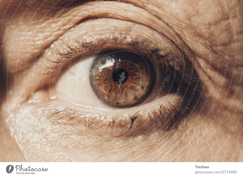 Macro Eye of Female Senior . front view eye wrinkled people female woman old age aged aging cosmetic eyeball eyelash eyesight horizontal lines look one person