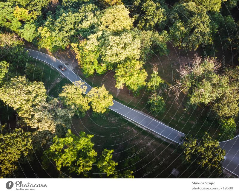Aerial View Of Mountain Road in late summer above aerial afforest asphalt background beautiful botany branch car colorful country countryside deforestation