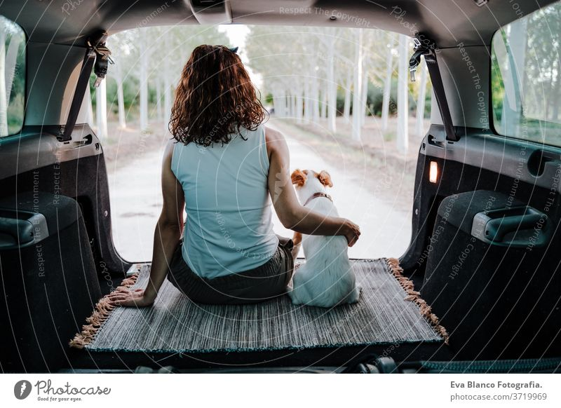 young happy woman with her dog in a car. Travel concept. back view travel jack russell together love outdoors lifestyle friendship vacation animal breed tender