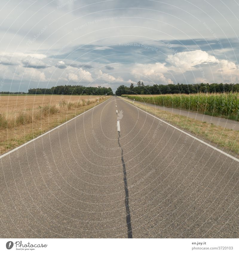 Straight ahead | road with fields Street Right ahead Maize field Horizon Sky Median strip Clouds Wide angle Summer Transport Traffic infrastructure Pavement
