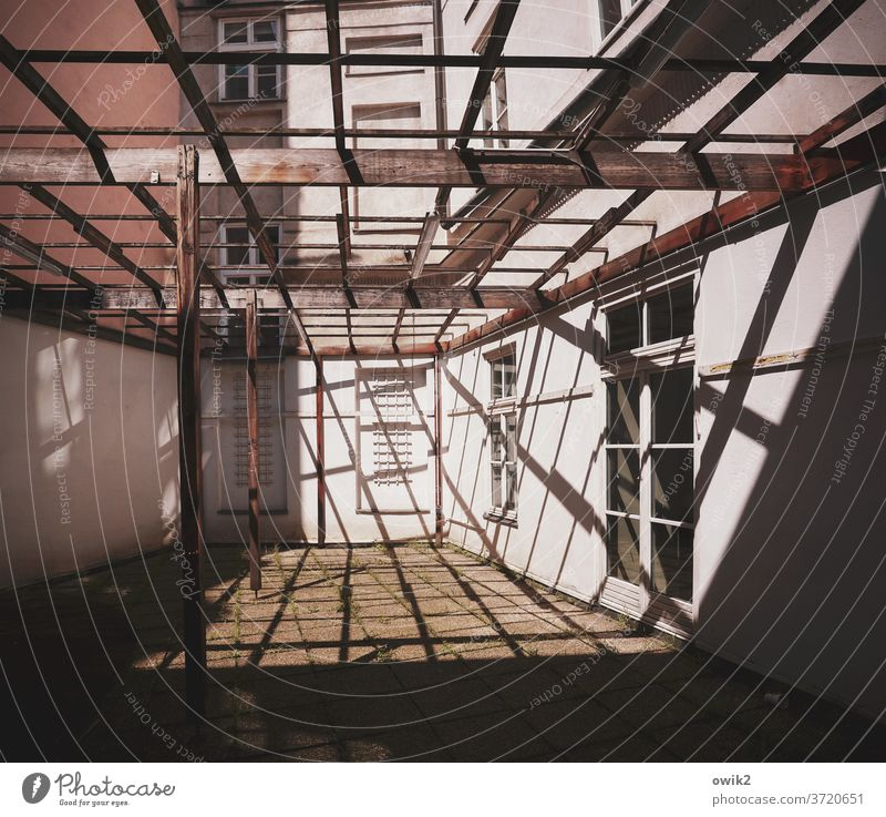 backyard Vienna Building House (Residential Structure) Wall (barrier) Wall (building) Facade Window Pérgola Wood Line Shadow Scaffolding Bright Firm Simple