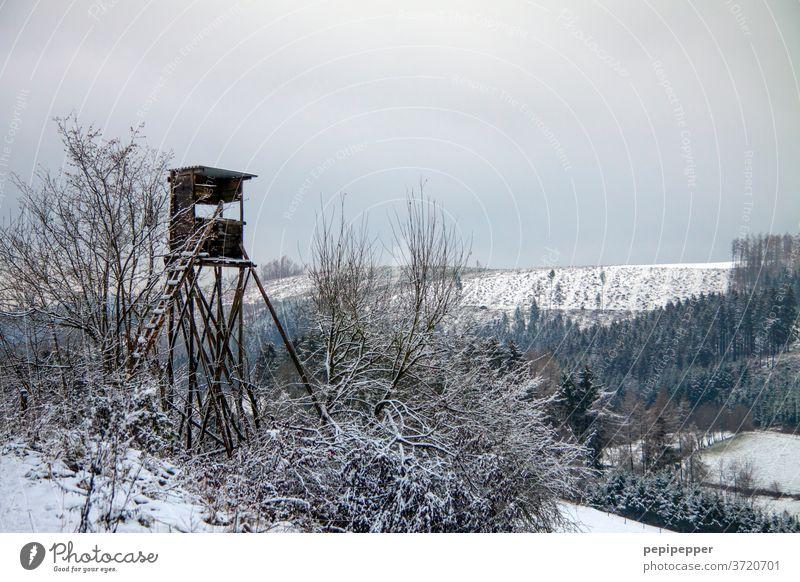 Jägerhochsitz Hunter Hunting Hunting Blind Nature Exterior shot Landscape Colour photo Field wood Vantage point Clouds tree Sky Forest Ladder Horizon