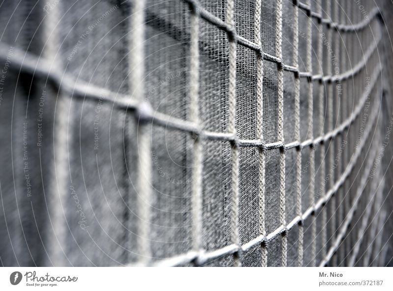 network | ut cologne | ehrenfeld II Facade Gray Net Safety Covers (Construction) Tool Reticular Construction site Security of supply Redecorate Protection