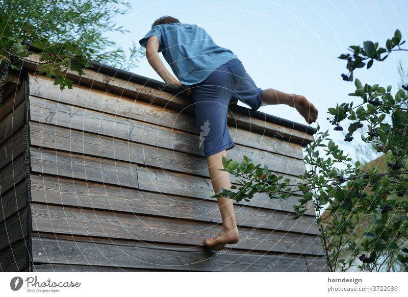 Boy climbs up a house wall Boy (child) teenager Summer warm out Athletic Sports high up climb up free time Bouldering Climbing exercise