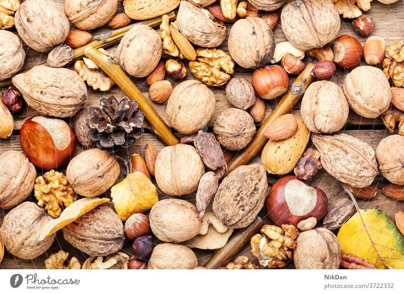 Mix nuts close up almond hazelnut pecan cashew peanut walnut seed set snack mix brown fruit mixed vegetarian natural assorted fall nuts background