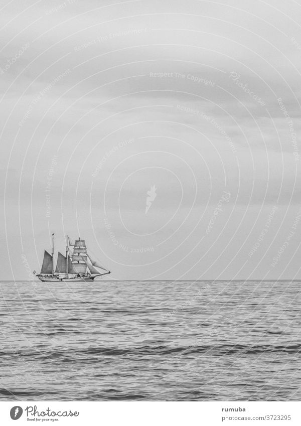 Sailing ship, Baltic Sea, sky Ocean Water Sky Freedom Nature Horizon Wanderlust Loneliness Summer Exterior shot Day Landscape Far-off places peaceful...