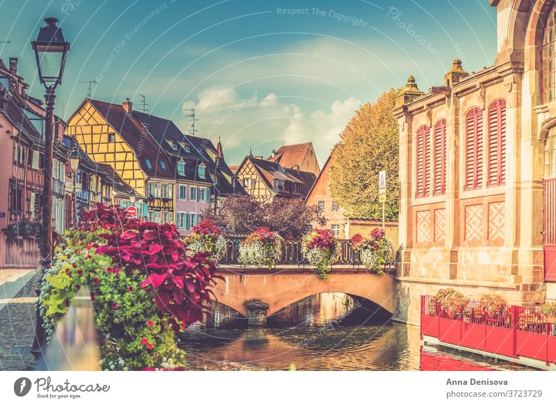 Colorful traditional french houses and shops in Colmar, Alsace colmar alsace france colorful beautiful village town street romantic old architecture europe