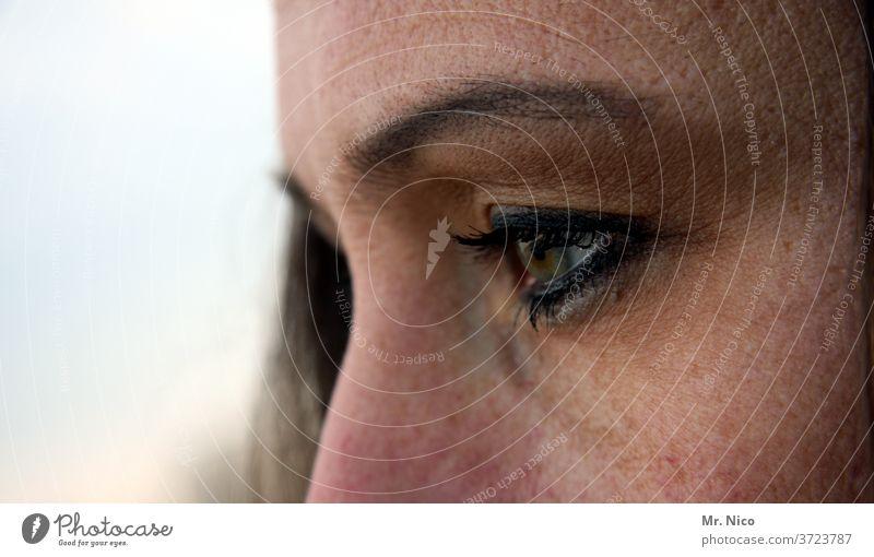 eye Eyes Skin Looking Eyebrow Eyelash Face Pupil Detail Woman Vision Eye colour Senses already Nose bridge of the nose Feminine Observe Exceptional Authentic