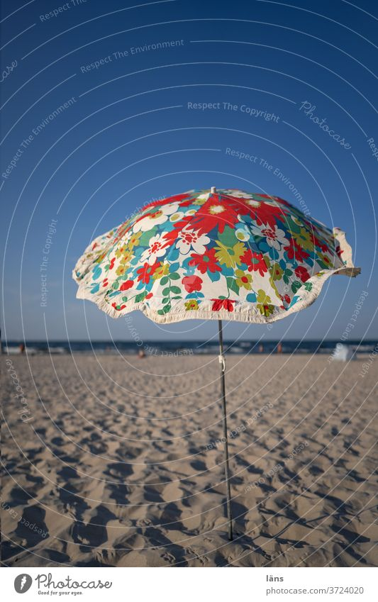 Sunshade on the beach Umbrellas & Shades Vacation & Travel Beach Summer vacation Ocean Tourism Relaxation Deserted Beautiful weather Coast Baltic Sea