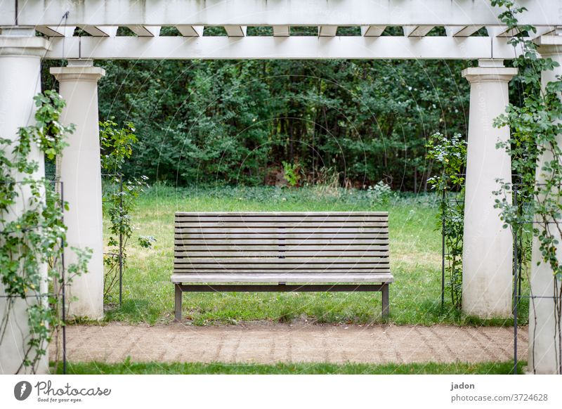 banking paradise. Bench bench Seating Deserted Exterior shot Colour photo wood Wooden bench Day Calm Loneliness Empty Park bench Arcade Plant Copy Space middle