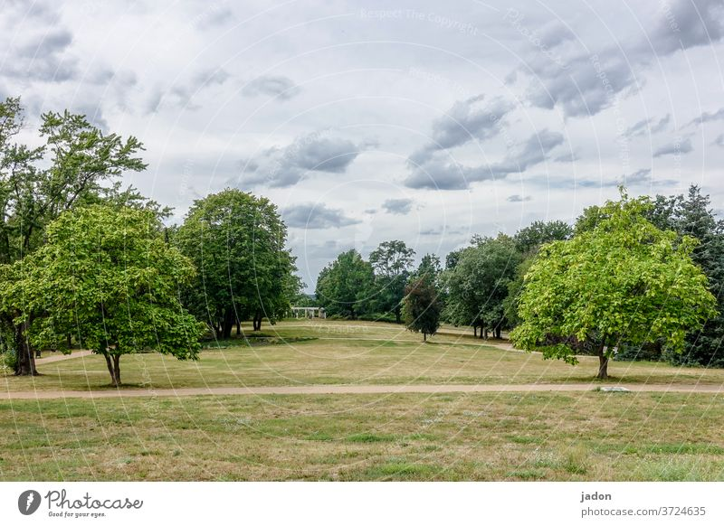 garden monument. Meadow aridity huts Nature Environment Landscape Colour photo Exterior shot Deserted Summer green Grass Day Plant Beautiful weather Sky Clouds