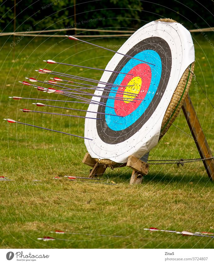 Archery target archery archery target arrow arrows sport leisure nature outdoor outdoors board wooden grass medieval
