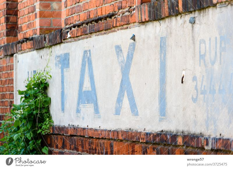 TAXI call written with blue weathered letters on white background Taxi taxi call Ancient Weathered blue letters VEB Advertising house wall Facade