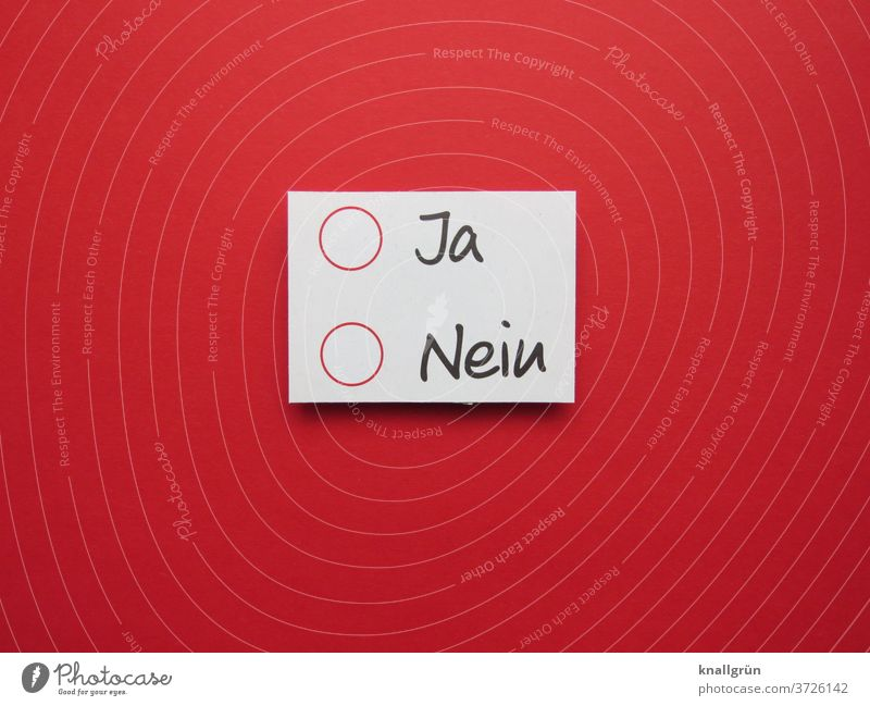 O Yes O No Decide choice Democratic Elections Democracy Laws and Regulations Definite no possibility Indecisive Vote Expectation Letters (alphabet) Word leap