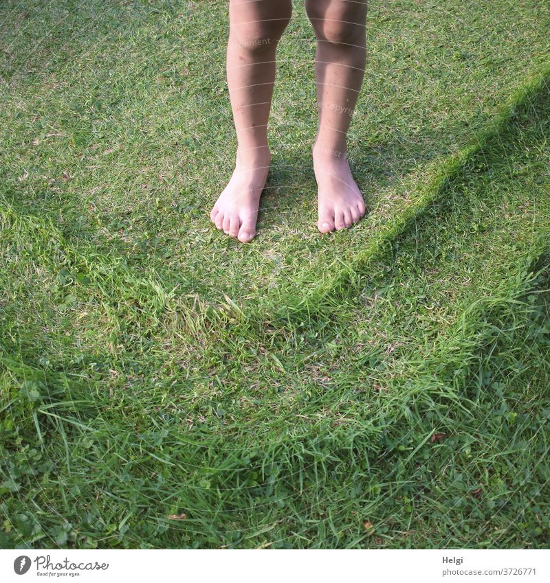 Children's feet barefoot on the lawn, which has been imprinted with a pattern by the paddling pool Legs Children's Feet Lawn Meadow Pattern structure Level