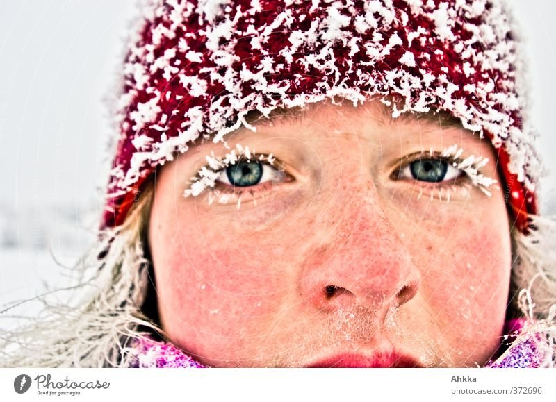 Face of a young woman in winter, frozen eyelashes and hair, very cold already Winter Young woman Youth (Young adults) Life Head Eyes Glittering