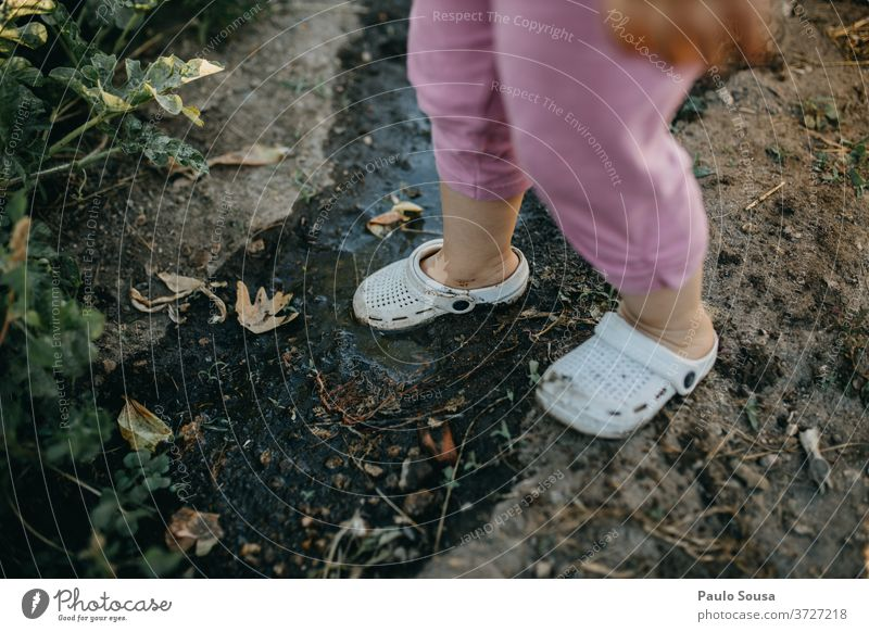 Child with Crocs on the mud Rubber crocs shoes Muddy confortable Dirty Colour photo Nature Earth Day Exterior shot Brown Human being Rubber boots Green Puddle