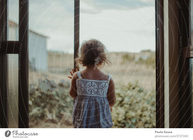 Child looking through window Rear view childhood at home stay at home Infancy indoor 1 - 3 years Colour photo Interest Contrast Light Day Hair and hairstyles