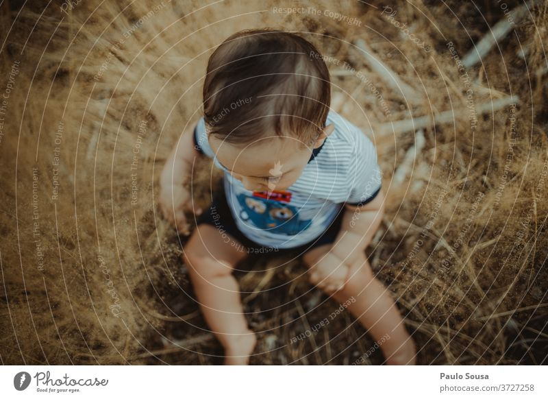 Toddler playing with plants Baby 0 - 12 months view from above Nature Innocent Summer Summer vacation Playing Lifestyle Day Cute Exterior shot Joy Infancy Child