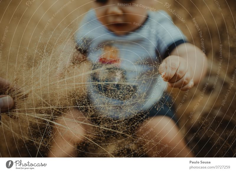 Toddler playing with plants Child childhood Baby 0 - 12 months Caucasian Summer Summer vacation Exterior shot Happy Human being Colour photo Infancy Beautiful