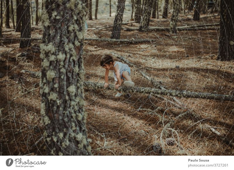 Little girl playing in the woods Child Children's game childhood Playing having fun Innocent Adventure Nature Wood into the forest Forest Happiness Summer