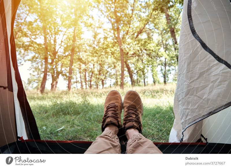 Inside view of camping tent on forest in sunny morning tourist inside background tourism nature wild grass trip tree activity adventure outdoor summer travel