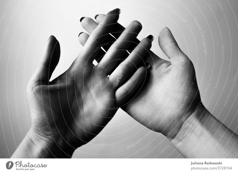 open hands in black and white Woman by hand Fingers Human being Detail Trust Close-up Touch Friendship Sympathy Adults To hold on Feminine Interior shot