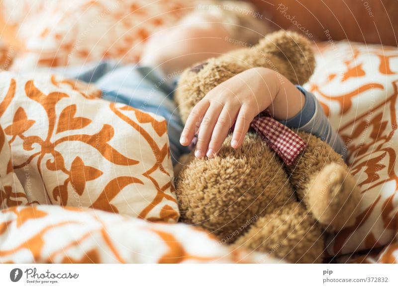 cuddly bear Human being Child Toddler Hand Fingers 1 3 - 8 years Infancy Children's room Bedroom Bedclothes Cushion Teddy bear Sleep Bright Cute Calm