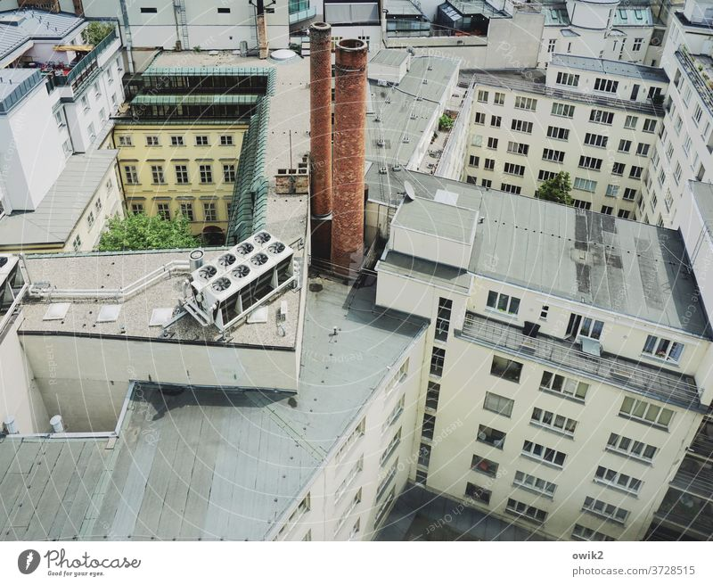 downtown Vienna City Capital city Austria houses sea of houses Window outlook Panorama (View) Exterior shot Town Colour photo House (Residential Structure)