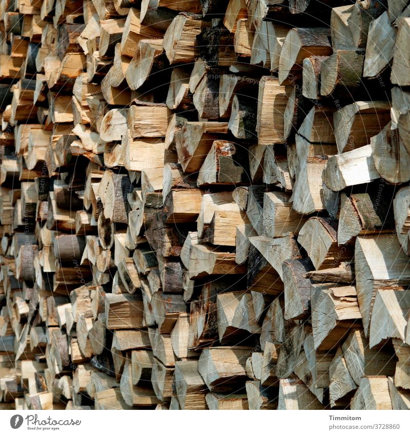 Stacked wood Wood Stack of wood stacked Edges Light Shadow Firewood Forestry Tree Nature Fuel
