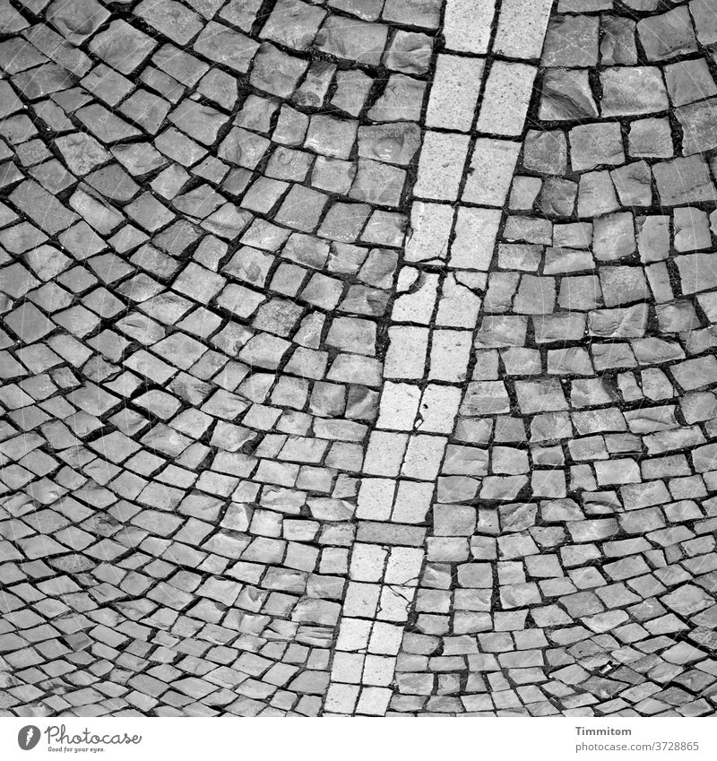 Square with cobblestones Paving stone Places Line interstices Lanes & trails Structures and shapes Deserted Stone Gray Black & white photo
