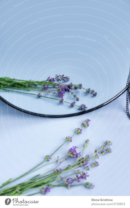 Blooming lavender with reflection in the mirror. flower vertical purple flowers floral design natural nature aromatherapy violet blossom background bouquet
