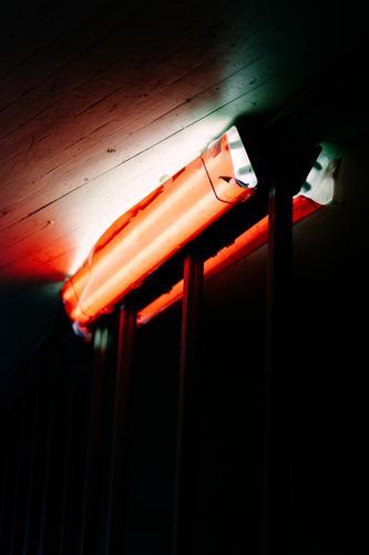 red light Light conceit Neon light Red Lamp Night Lighting Black Red light Colour Illuminate Blanket