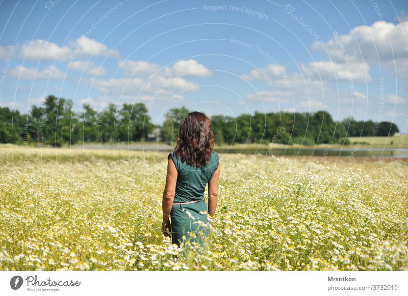 Woman in the field Feminine Human being Adults Exterior shot Nature Full-length Dress green by oneself Back Loneliness already Chamomile Camomile blossom