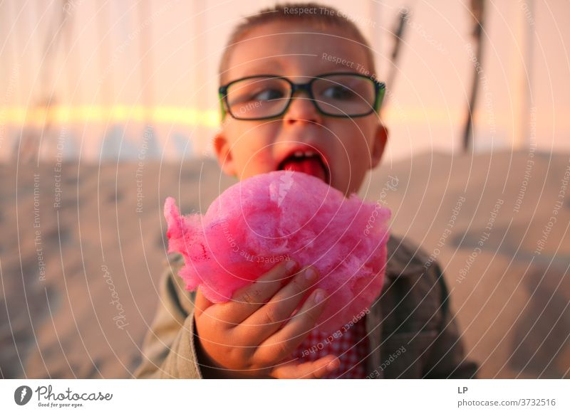 boy eating pink candy floss Boy (child) Looking Front view Upper body Portrait photograph Sunlight Exterior shot Multicoloured Innocent Reluctance Survive