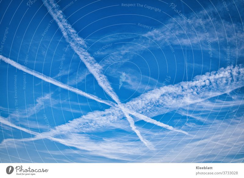 Airplanes draw X-shaped lines in the bright blue sky Sky Blue sky Beautiful weather Weather Exterior shot Clouds Deserted Copy Space Climate White Freedom