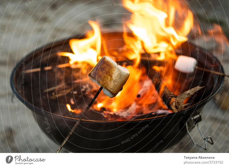 Roasted marshmallow on fire campfire bonfire bbq sweet fireplace food barbecue flame roast roasting summer stick evening delicious outdoors cooking night candy