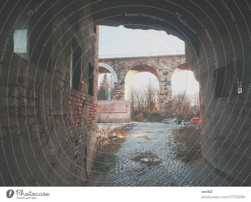 Old viaduct Ruin Building for demolition Vista forsake sb./sth. Trashy bushes Cobblestones Wall (barrier) somber Dangerous Deserted Colour photo Wall (building)