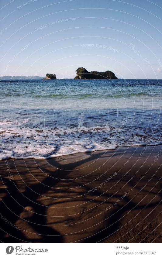 saltwater & shadows. Nature Landscape Sand Sky Summer Tree Waves Coast Beach Ocean Vacation & Travel Island Idyllic beach New Zealand Coromandel peninsula