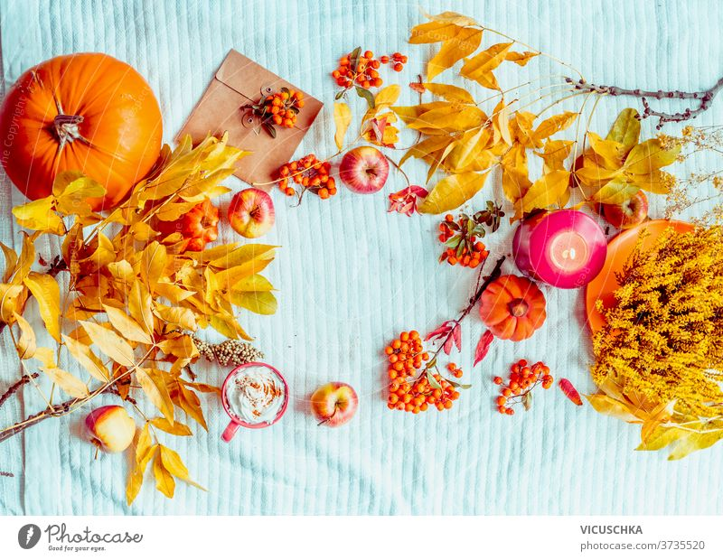 Fall mood. Various autumn decoration. Pumpkin, cup of hot chocolate, candle on blue knitted blanket. Frame. Flat lay. Top view fall various pumpkin frame