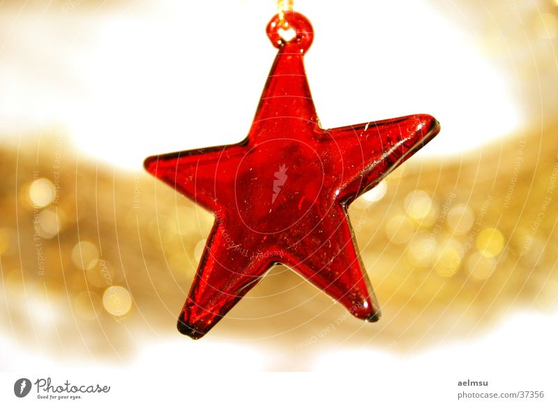 Star of glass II Red Transparent Jewellery Festive Checkmark Decoration Star (Symbol) Glass Gold Feasts & Celebrations Christmas & Advent
