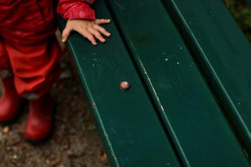 A toddler in rainwear stands in front of a wet green park bench on which a snail is lying. Love of animals Toddler Park bench Wet Crumpet Rainy weather Marvel