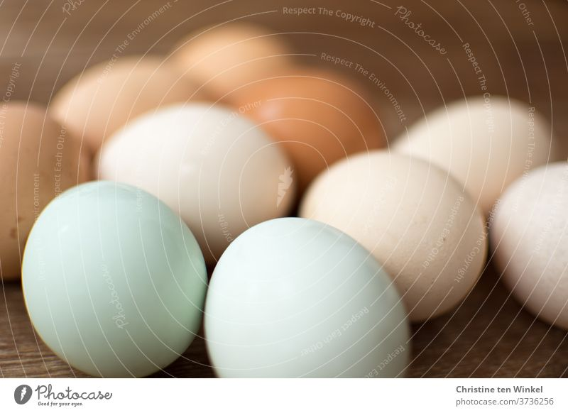 Naturally coloured eggs from happy hens on wooden background Chicken eggs variegated natural-coloured Organic produce Food Egg Nutrition Eggshell colorful eggs