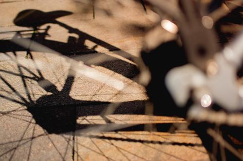 Bicycle. Silhouette. Shadow. Sunlight. Detail Saddle Tire Spokes Glittering Wheel Means of transport Close-up Light Metal Shallow depth of field Black Cycling