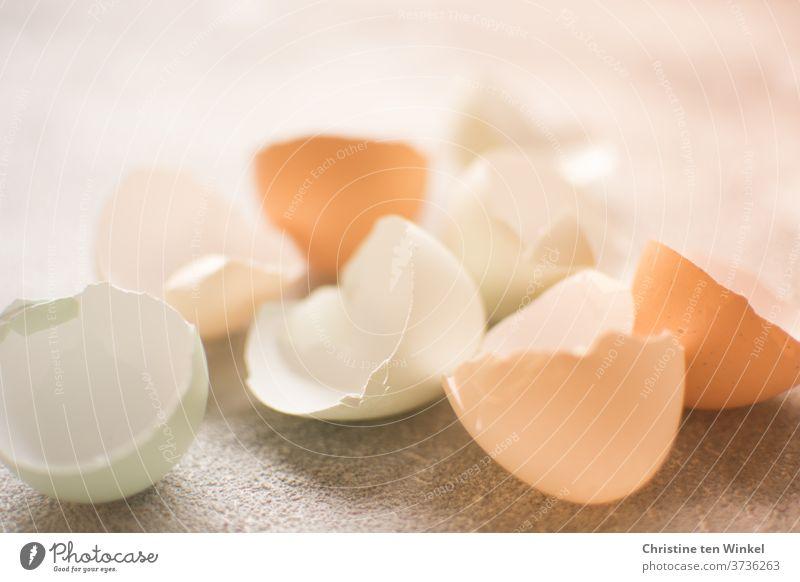 Naturally coloured egg shells on a light background against the light eggshells Hen's egg Close-up Brown Beige pale green Green Egg Eggshell Organic produce