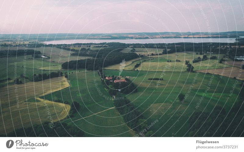 Mecklenburg Switzerland aerial photograph drones UAV view Field Harvest Meadow Lawn Lanes & trails cross green Bird's-eye view curvaceous Street huts acre